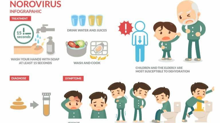 ノロウイルス 流行時期