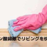 クエン酸掃除 リビング