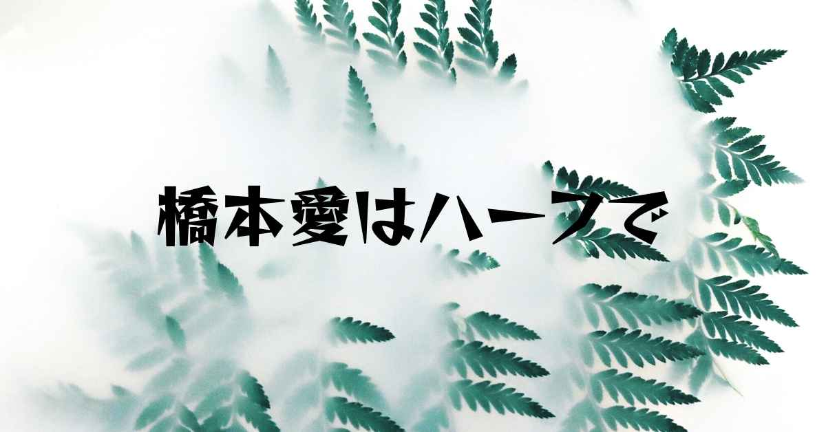 橋本愛はハーフで