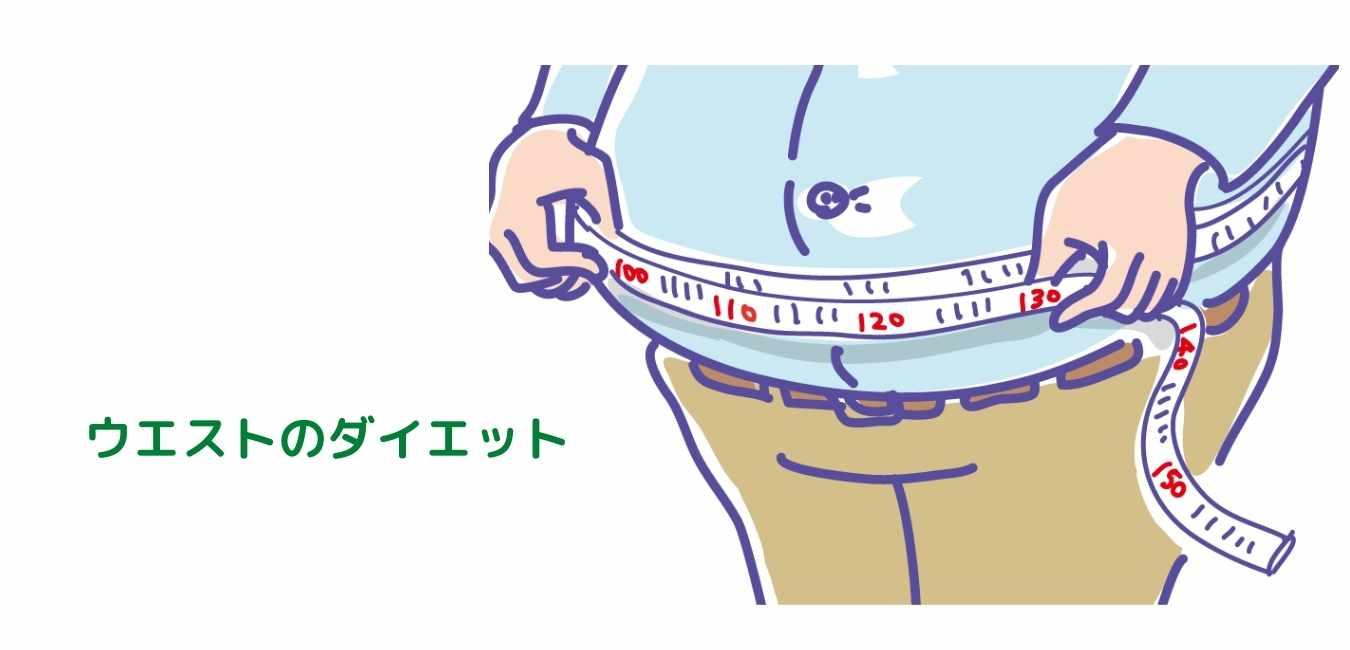 ダイエット お腹 (1)
