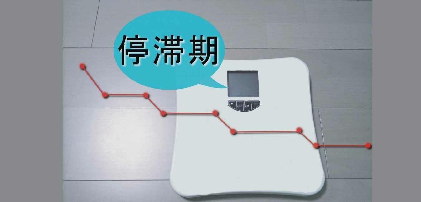 体重が減らない (1)