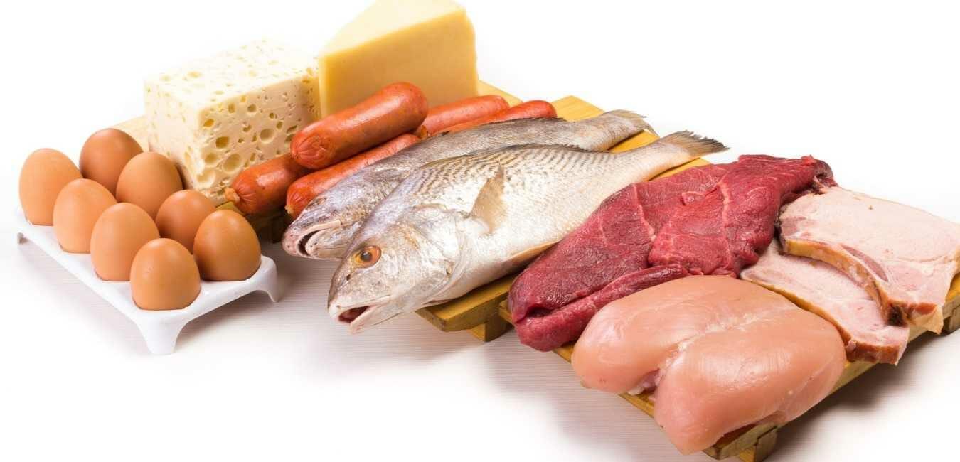 タンパク質 ダイエット