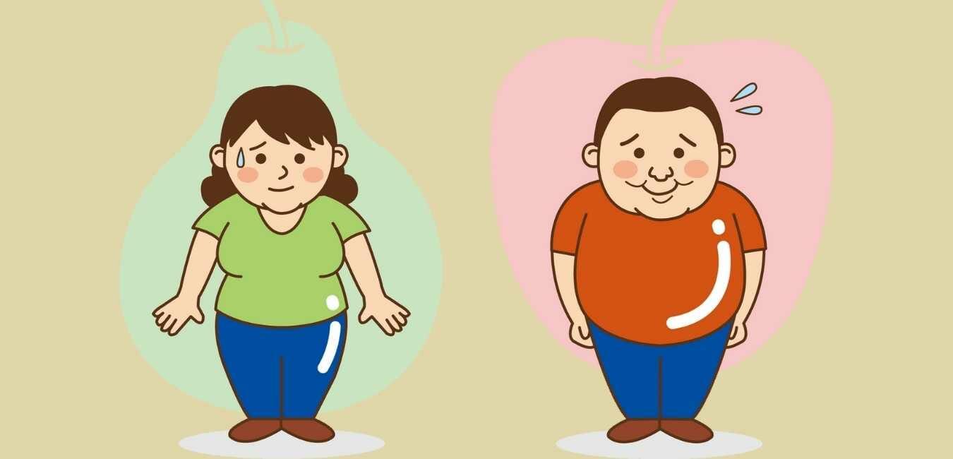 50代 ダイエット 20キロ