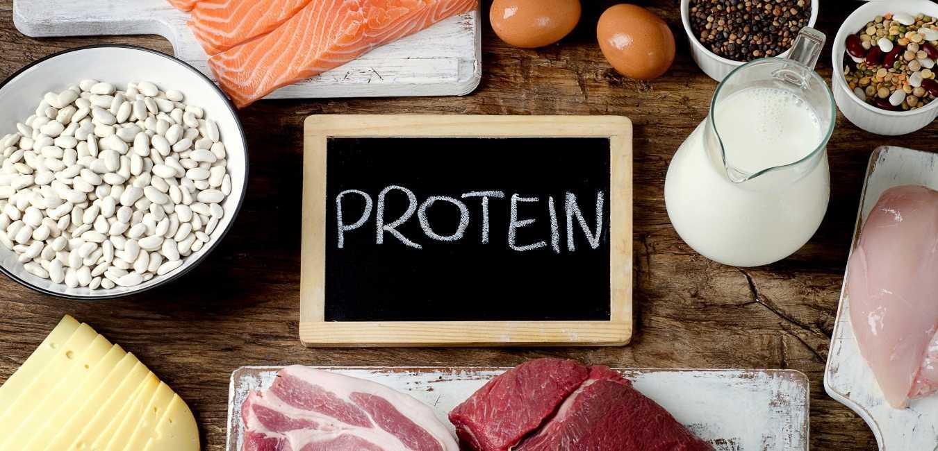 ダイエット タンパク質 (6)